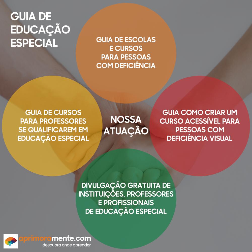 guia de educacao especial como a plataforma atua.png